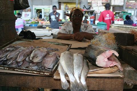 Mercado do Peixe