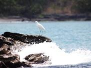 Lago Niassa, mergulhar no lago das estrelas