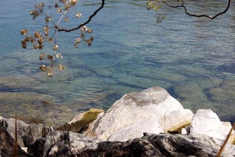 Lago das estrelas