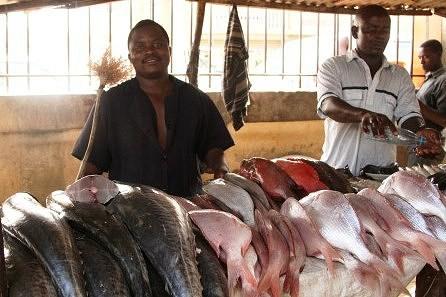 Mercado do Peixe. Todo o peixe que aqui se enontra saiu do mar a alguns  minutos.