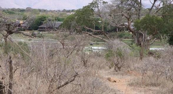 Kruger Park - África do Sul