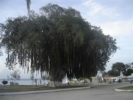 Ilha de Moçambique, Nampula