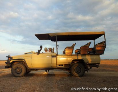 Game drive truck