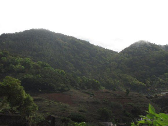 Parque Natural do Monte Gordo