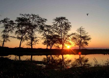 O pôr-do-sol no Parque Nacional da Gorongosa. Foto Jeff Barbee PNG